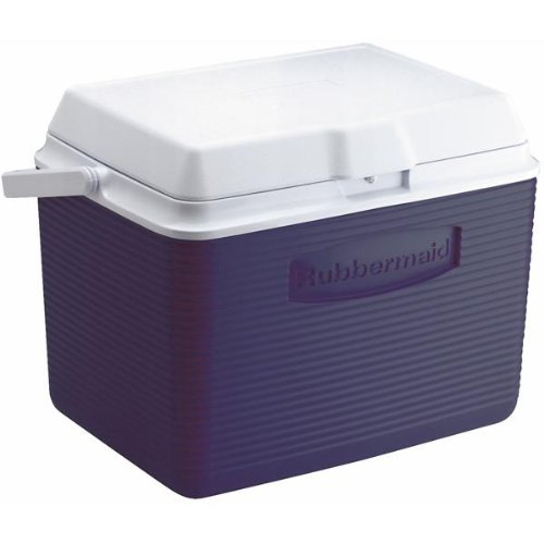 best ice cooler for the money